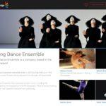 Multi Portfolio - Dance Company