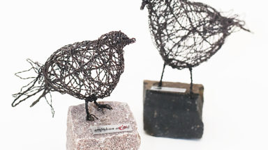 Birds/Fåglar
