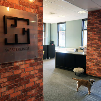 The shared creative space is provided by Westerlinds fastigheter