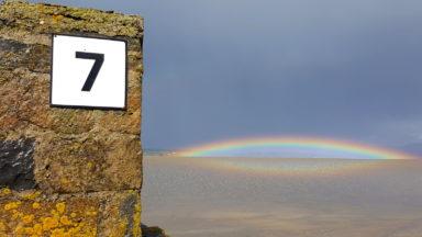Lichen and Rainbows. Val Robus