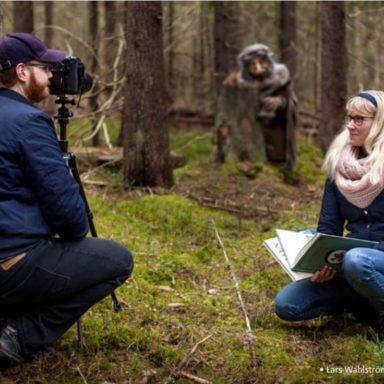 Oknytt in the woods